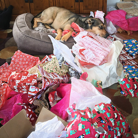 Christmas fatigue