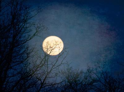 Bad Moon Risin'
