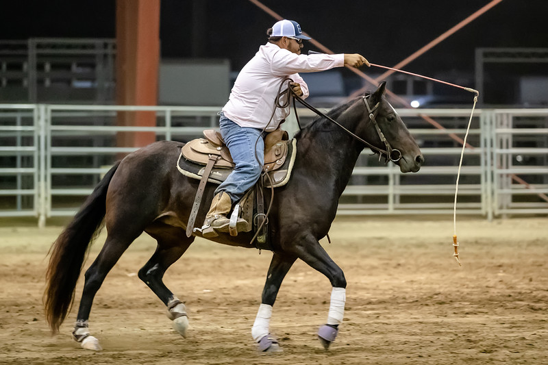Proverbial Training <br /> <br /> (October 22, 2019) Finished processing one day of the Norco Horse Affair, and I had forgotten about this humorous moment in Luke's freestyle performance in the Mustang Invitational event.