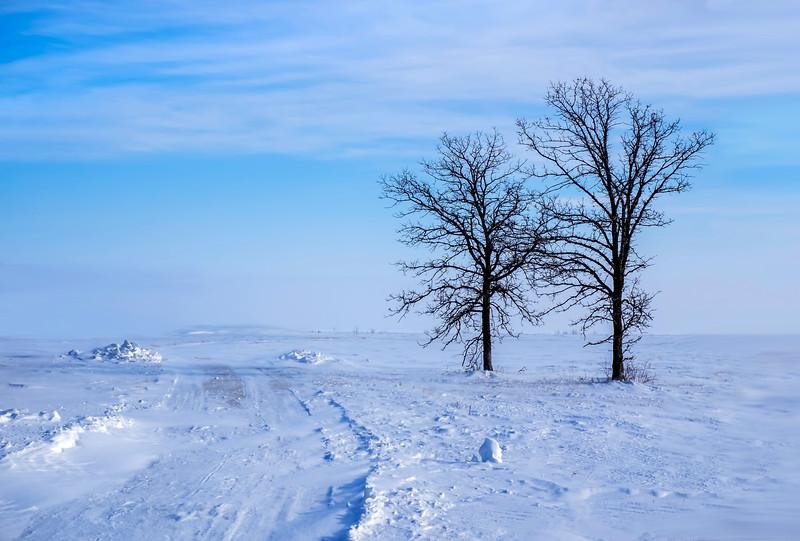 Blowing snow on Lake Manitoba