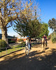 Saturday at the barn<br /> <br /> (December 26, 2020) No photos today, just an phone pic of kids having fun. It's a good place to be the day after Christmas in a pandemic.