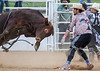 Bull's Eye<br /> <br /> (February 21, 2021) Bubba is quick on his feet, and nobody was hurt, including the bull.