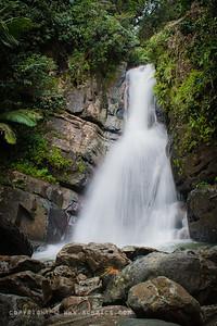 September 17, 2011  La Mina Falls, El Yunque