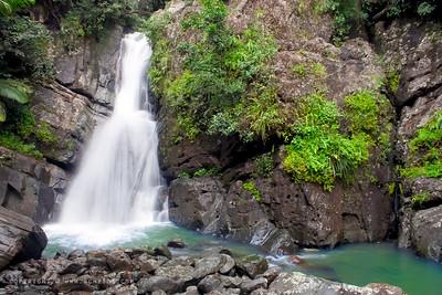 September 18, 2011  La Mina Falls, EL Yunque