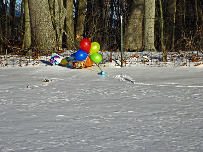 1/18   Windy--Loose Balloons