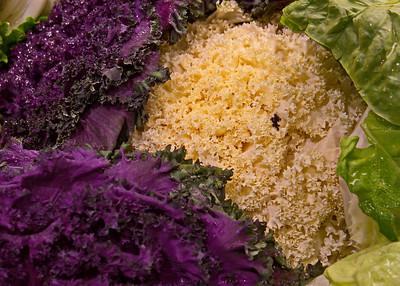 1/23    Flowering Kale