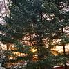 3/8   Promising Sunrise
