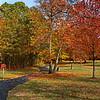 11/3   Color at Schrier Park