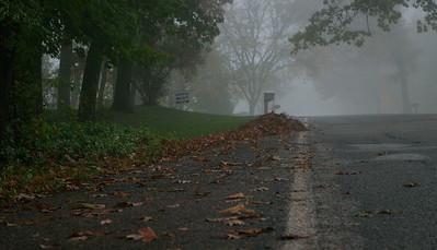 11/5   Foggy Morning