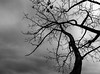 Stormy skies - the drama of spring!<br /> 04.16.15