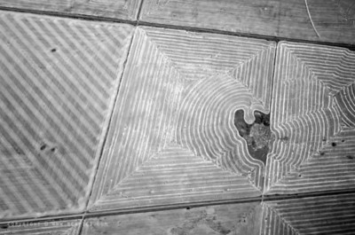 October 27, 2008  Drawing on the ground...