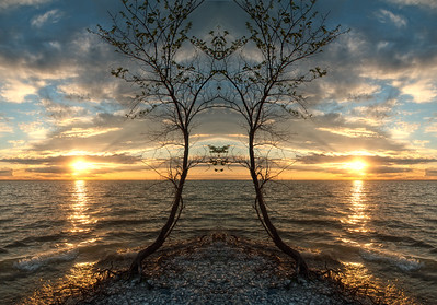 Tree Spirits in the land of two suns!  I've been playing with mirrored images & am wondering what you think of this one.  The original is a shot of a curved tree on the shoreline at sunset. Mirroring is so simple...just duplicate the shot & flip it horizantally, then 'glue' them together.   You'll find lots of funny little faces in there, the closer you look, the more you see. 08.03.12