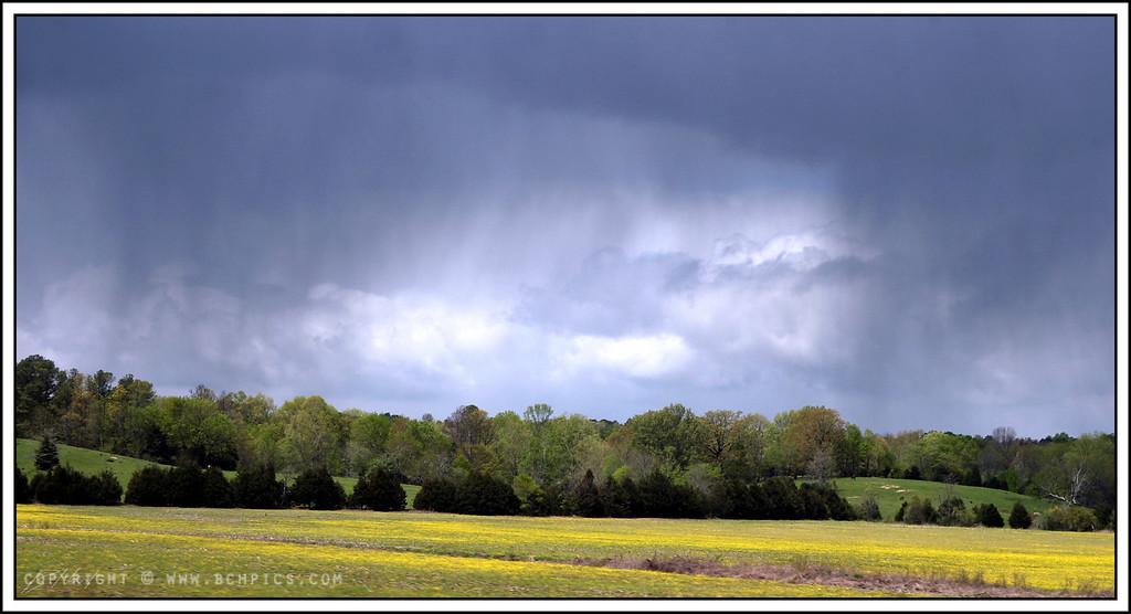 April 19, 2008<br /> <br /> April Showers-