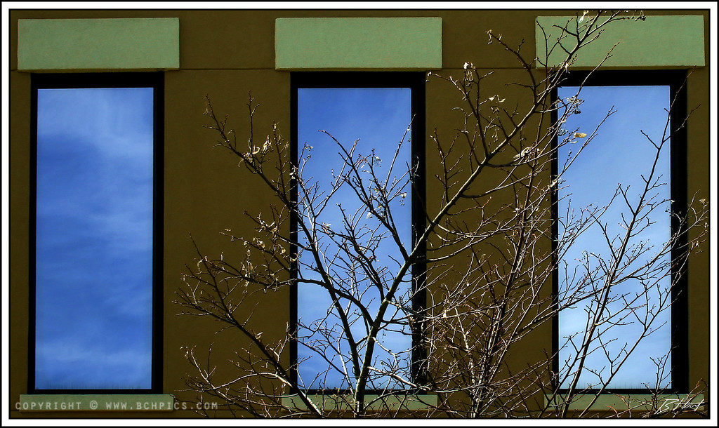 March 18, 2008<br /> <br /> I like shapes and reflections...what can I say-