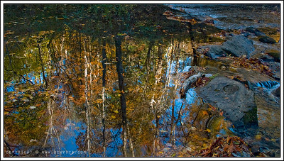 November 12, 2008  Borden Creek Reflections Bankhead National Forest