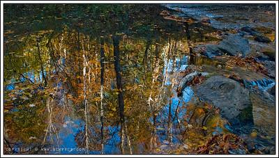 November 12, 2008  Borden Creek Reflections Bankhead National Forest