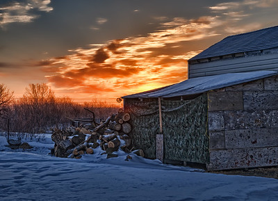 Sunrise behind the woodshed. 03.13.12