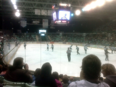 October 25, 2008  Only break in 5 days...Hockey Game in Red Deer- (Cell phone pic)