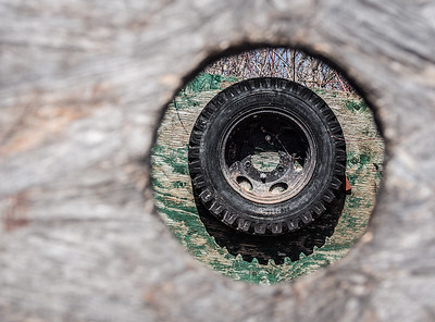 Through the peephole....  in the box of an old abandoned truck. 04.22.15