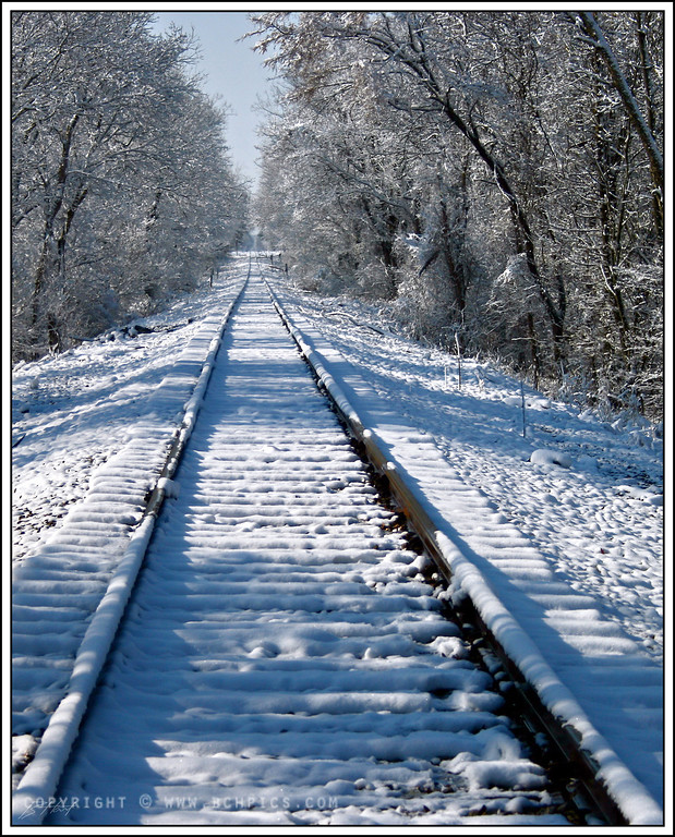 March 10, 2008<br /> <br /> Tracks in the Snow-<br /> <br /> Last of the snow pics- back to spring tomorrow-