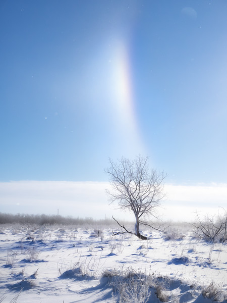 Sun dogs & ice crystals