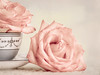 Roses in still life…<br /> <br /> for our last Sunday Still Life challenge.<br /> <br /> I've really enjoyed how challenging this challenge has been… great idea, Judy, thanks so much!<br /> <br /> Can't wait to see what all you creatives come up with today!<br /> 03.01.15