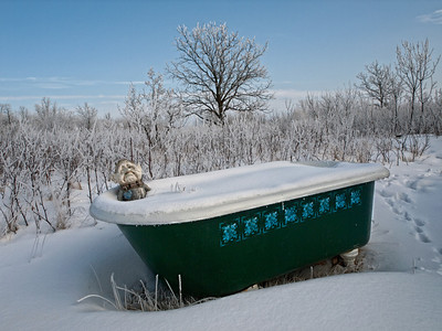 Unfortunately, the Gremlin's annual Polar Bath did not go all that well this year :-)) 02.07.12