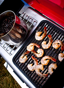 July 9, 2010 A quick shot of one of our grills at the DMB tailgating extravaganza. More photos here:   http://www.facebook.com/album.php?aid=196507&id=684840848&l=4781409609