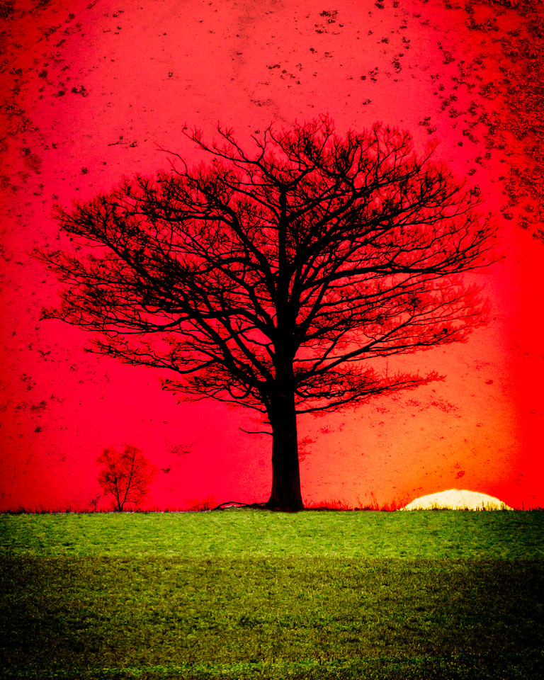 This is my favorite tree on top of its small hill. Composite of three pictures; a real sunset, a real tree and real stone make for a  surreal scene.