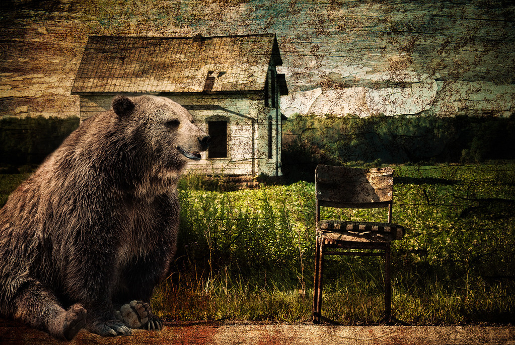 Sitting on a chair, close to a bear.