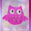 02/12/14 - Owl Be Yours