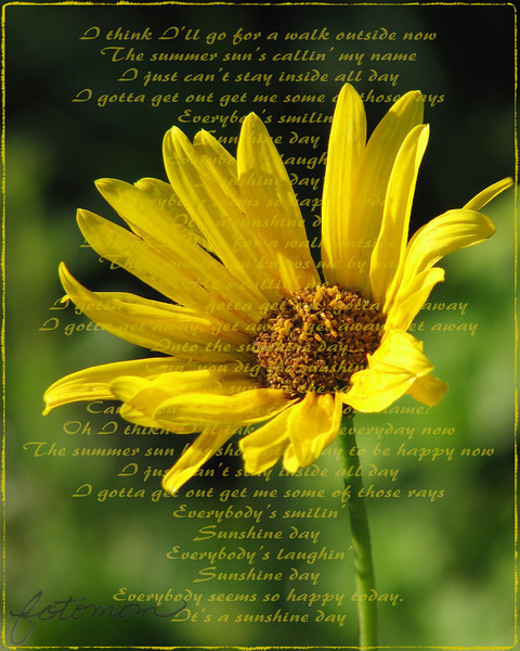 """08/17/11 - Sunshine Day<br /> <br /> Adapted from:<br /> <br /> <a href=""""http://www.youtube.com/watch?v=c6wTY37EvQI&feature=player_embedded"""">http://www.youtube.com/watch?v=c6wTY37EvQI&feature=player_embedded</a><br /> <br /> Taken on the way home from dropping the kids off at school this morning.  For some reason I have energy and the urge to clean and reorganize!  Go figure!<br /> <br /> Thanks for your comments on my scary spider...<br /> <br /> HAGD,<br /> Maryann"""