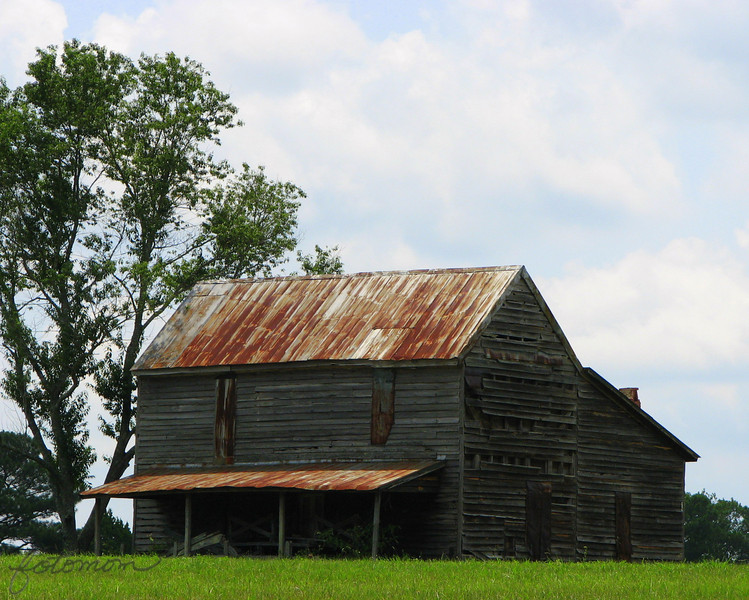 "07/25/09 - The Old Homestead (sometimes I call it The Barn but it's not really a barn).  Straight line, this homestead is about 2 miles from my house.  Over the past year and a half, I've driven by it many times and taken pics of how it changes during the seasons.  You can see some of those other pics <a href=""http://fotomom.smugmug.com/gallery/7265861_EDckQ#467076356_VGE4F"">here</a>.  One day I was taking pics and a hunter came to shoot in the nearby field.  He gave me a little history about the place telling me about the family that used to live there, etc.  I just think it's neat.  Maybe you will too.  As I said in my 7/24 pic, I won't have internet access again until late Sunday night, so I'm posting two pics today.  You guys have a great weekend!  I'll be hopefully be taking lots of pics."