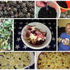 06/28/14 - Blackberry Cobbler
