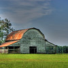 "09/03/10 - Watching Over the Field<br /> This is another barn just a few miles from my house on a road less traveled.  Twice in the past week I've stopped to take pics of it.  Once late in the day and once early in the day.  The angle of the barn on the land makes it hard to pick a 'right' time to shoot it.  I guess it's mostly looking North and maybe a tad East.  At any point, I was pleased enough with yesterday's shots to share one.  After comparing with the late day light ones, I thought this was an improvement.<br /> <br /> Yes, it's HDR, and yes I think it's a bit dramtic.  I did no less than 6 HDR versions of it trying to get just the right one.  This appealed to me most.  Here is the original:<br /> <br /> <a href=""http://fotomom.smugmug.com/Nature/September-2010/13603183_MRnLu#992011320_25yV8"">http://fotomom.smugmug.com/Nature/September-2010/13603183_MRnLu#992011320_25yV8</a><br /> I would never have posted that.  Too flat for me.  I like that the HDR will bring out details otherwise lost to low light and distance and also accentuate the pretty colors in these types of shots.  <br /> <br /> I also did a black and white version taken at a slightly different spot along the road which captures a power line with birds on it beside the barn.  It's an entirely different mood:<br />  <br /> <a href=""http://fotomom.smugmug.com/Barns-and-Other-Buildings/Barns-Misc/13998308_WRdcJ#992723480_2V2v2"">http://fotomom.smugmug.com/Barns-and-Other-Buildings/Barns-Misc/13998308_WRdcJ#992723480_2V2v2</a><br /> <br /> Besides sunlight lighting up the tree on the left, there are also tent caterpillars giving the tree a bit of a glow.<br /> <br /> Now, just to the right of where I'm standing with the camera propped on top of a mailbox for this one was this cutie:<br /> <br /> <a href=""http://fotomom.smugmug.com/Nature/September-2010/13603183_MRnLu#992023660_oMBri"">http://fotomom.smugmug.com/Nature/September-2010/13603183_MRnLu#992023660_oMBri</a><br /> <br /> Thanks for all your comments on the golden rain tree shot from yesterday.  I will follow the maturity of the seed pods and may share another shot sometime.<br /> <br /> Raleigh is cloudy and no rain.  I see on the radar that Earl is still bringing a lot of rain to the NE part of the state and into VA.  <br /> <br /> HAGD,<br /> Maryann"