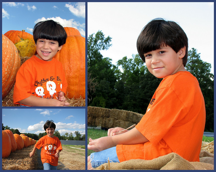 09/28/09 - Pumpkin Boy<br /> The huge pumpkins are in at Porters Farms just up the road from us.  Another yearly tradition is to go take pictures by the big pumpkins:-)  We bought a few small ones.  And, if you have $30 and are looking for the biggest, nicest pumpkin around, this is the place to go!  They have really pretty mums and gords and cornstalks and...  Oh, I just want 2 or 3 of everything!  <br /> <br /> We took pics, ate their homemade ice cream (the lemon flavor has Cheesecake Factory cheesecake in it!), and took more pics.  Then of course I had trouble picking just 1 pick.  Could you choose?  <br /> <br /> I wish I knew how to 'fix' the sky in the one on the right, but even though there are no pumpkins in that shot, it's my favorite facial expression.<br /> <br /> Leaving in just a few for the NC Aquarium at Fort Fisher and Wrightsville Beach.  Both boys are out of school, and I took the day off.  2 hours each way will make for a long day, but I'll be on later processing my beach shots.<br /> <br /> HAGD!<br /> Maryann