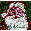 "12/04/10 - Christmas Bulb Santa<br /> <br /> First off, I want to say that Art Hill took the original photograph that I used to produce this card.  It's a window display taken at the Tribune Tower on Michigan Avenue in Chicago.  I was browsing his November gallery, saw the shot of the window, and was inspired to ask him if I could try something with it with his permission of course.<br /> <br /> To appreciate this, you have to look at the original:<br /> <br /> <a href=""http://fotomom.smugmug.com/Children/Arts-Santa/14918145_mPRnQ#1113694891_AnhuP"">http://fotomom.smugmug.com/Children/Arts-Santa/14918145_mPRnQ#1113694891_AnhuP</a><br /> Nothing Art could do about the glass glare and reflection but surely eye catching enough to take a picture of anyway.  <br /> <br /> I used a combination of cutting out the top left green bulb area and sliding a duplicate layer to the right and blending it in in combination with cloning individual bulbs where needed and then some spot healing and more cloning to get rid of the seams.  I dunno, maybe 90 minutes of fooling with it.  I did save a copy of the tweaked Santa before proceeding to add frames and text.  However, in this very final copy I saw a seam line that needed fixing and just directly edited the framed/text version.  This is sized to print 8X10.  It would be fairly easy to size it to other sizes and re-add the frame.<br /> <br /> Anyway, a super big thanks to Art for giving me this opportunity.  I just saw something in his picture.  I had fun working with it to produce this card!<br /> <br /> Thank you for your comments on the Frosty shot from yesterday.  Joey and I are scheming which snowman to take pics of next.  He'd like to help.  He said he'd like it to be his daily.  So, maybe this weekend we'll get to that.  Hope!<br /> <br /> HAGD,<br /> Maryann"