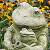 08/28/14 - Mama Frog and Baby Frog