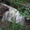 12/26/14 - Front Yard Waterfall