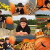 "10/03/11 - Big Pumpkins<br /> <br /> My Blog:  <a href=""http://maryanng.blogspot.com/2011/10/big-pumpkins.html"">http://maryanng.blogspot.com/2011/10/big-pumpkins.html</a><br /> <br /> The big pumpkins are now on display at Porter Farms and Nursery.  When the boys got home from their dad's house yesterday, we went for ice cream and pictures.  Joey was delighted that they had pumpkin flavored ice cream in the freezer case now.  Both boys posed for pictures and enjoyed their ice cream.  We always buy several small pumpkins over the month of October as we go to various farms, produce stands, and stores, but we've never bought a large pumpkin before.  This year we decided to pick one out.  That's going to be something to carve!   Joey even offered to take a pictures of his mom.  Wasn't that sweet?!?  The sun was just killer on our eyes just about no matter which direction we posed.<br /> <br /> <a href=""http://fotomom.smugmug.com/Nature/October-2011/19317684_FfRgp4#1510111031_FmV6qgg"">http://fotomom.smugmug.com/Nature/October-2011/19317684_FfRgp4#1510111031_FmV6qgg</a><br /> <br /> The boys are tracked out from their year round school for 3 weeks now.  More fall destinations and orange coming your way in pictures soon:-)<br /> <br /> Thanks for your comments on my white ball Waffle House lights from yesterday.<br /> <br /> HAGD,<br /> Maryann"