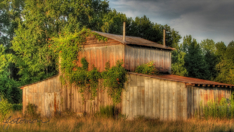 """08/11/11 - Barn in the Setting Sun<br /> <br /> A barn not too far from the kid's Wednesday night soccer location in Clayton.  I was first drawn to the barn a few weeks ago when I noticed the trumpet vine/orange flowers on the front.  Either I was running too late or it was cloudy or the sun was too far down for a picture.  Thankfully last night on the way home I had enough sunlight and time to stop.  Lots of poison ivy in the grasses right in front of the barn, so I was limited in where I could stand.  Had the displeasure of a driver coming by and flooring his super loud muffler right near me on purpose.  Why do folks do that?!?  <br /> <br /> Original:<br /> <br /> <a href=""""http://fotomom.smugmug.com/Nature/August-2011/18330920_7pCmrW#1425457818_vXXhtdt"""">http://fotomom.smugmug.com/Nature/August-2011/18330920_7pCmrW#1425457818_vXXhtdt</a><br /> <br /> HDR, power line and shadow removed, Orton applied at 50%, Vignette applied at 15%.<br /> <br /> Thanks for all your comments on the stainless creamers...<br /> <br /> HAGD,<br /> Maryann"""