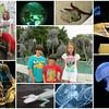 07/27/14 - NC Aquarium Fort Fisher