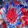 05/21/15 - Patriotic Flowers