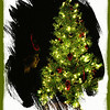 """12/9/09 - Green Garland Tree<br /> I picked up this little tree a few years ago in the after Christmas sale at KM.  I guess nobody wanted a green garland tree.  It was very cheap.  I put it in the attic until the following year when I figured we'd give it a try.  What do you know...it's VERY pretty in the dark.  And, so pretty it really doesn't require much decoration.  It's come back out every Christmas since.<br /> <br /> I have a little artificial Norway Spruce (tall and thin) tree too.  This is all besides the real, big tree we have.  Every year I think I might skip the real tree with these little trees and then never do.  So, Johnny's tree is the spruce and Joey's tree is the green garland one.  Each boy is delighted to have their own tree and mostly decorated it themselves.<br /> <br /> It's 100% the year of the elf at my house now.  We have 6 elves moving around the house every night while the boys sleep.  There's the Elf on the Shelf that started it all and a few we found at the thrift store and a few I found in the attic off my tree when I was a child.  So.....in this picture, Joey has on elf hat, green shirt, and elfy PJ bottoms which you can't see.  He's an elf:-)<br /> <br /> You can see more of Joey's outfit in this version:<br /> <a href=""""http://fotomom.smugmug.com/Nature/December-2009/10503706_iqUUs#735969032_eNrfm"""">http://fotomom.smugmug.com/Nature/December-2009/10503706_iqUUs#735969032_eNrfm</a><br /> <br /> I liked the frame here because it made me feel like I was peeking in the window at a child just delighted by the glowing lights on his tree.  The window looks snow colored, or it's cold enough out and warm enough in to have condensation on it.  PhotoFrame had both frames (white and green).  <br /> <br /> I printed 4X6 (true digitial size) prints of this picture for Joey to give out at school.  I put his name and the year in the lower right corner.  <br /> <br /> Thanks to those that stopped by to look at my red and green glass shot from yesterda"""