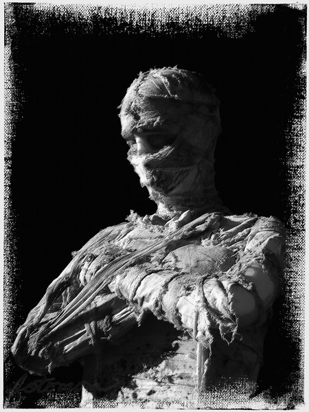 "10/28/09 - The Mummy Awaits<br /> This was taken at the NC State Fair last week.  She? was standing out in front of one of the fun houses.  I guess I should tell you, if you can't tell, that it's a mannequin.  For processing, I pulled her off the horrid background she was on.  Then, I created a textured black background.  Then I went through several filters to try to enhance the gauze fiber feeling of the photo.  Then I used Photoframe to put on a canvas frame.  Then I spot healed a few white or black spots that weren't where they were supposed to be.  After all that, you know the usual couple of hours later, here she is:-)<br /> <br /> She looks rather bland without the frame I think, and for Dgrin which I might consider entering her or some of my other creations from this month, frames aren't allowed.  Bummer.  <br /> <br /> The original picture:<br /> <a href=""http://fotomom.smugmug.com/Children/Halloween-Fun-2009/9845761_KK5Lt#695182962_b7VJb"">http://fotomom.smugmug.com/Children/Halloween-Fun-2009/9845761_KK5Lt#695182962_b7VJb</a><br /> The updated picture minus the frame:<br /> <a href=""http://fotomom.smugmug.com/Children/Halloween-Fun-2009/9845761_KK5Lt#695201153_XVsjx"">http://fotomom.smugmug.com/Children/Halloween-Fun-2009/9845761_KK5Lt#695201153_XVsjx</a><br /> Another really creepy guy I'm considering:<br /> <a href=""http://fotomom.smugmug.com/Children/Halloween-Fun-2009/9845761_KK5Lt#695178647_caAGu"">http://fotomom.smugmug.com/Children/Halloween-Fun-2009/9845761_KK5Lt#695178647_caAGu</a><br /> <br /> I can't believe I'm posting a B&W photo two days in a row!<br /> <br /> Thank you all for your comments on the cookie photo.  If it inspired you to go bake some cookies or get cooking in the kitchen with someone you love, then the photo worked it's magic.<br /> <br /> I hear we might see sun this afternoon.  Seriously, it's been a solid 6 days of total overcast skies and rain.  I was up briefly at 2AM, and it was pouring here.  We need the rain because we're too dry this fall, but I'm ready for the just drizzle days to leave.  <br /> <br /> HAGD,<br /> Maryann"