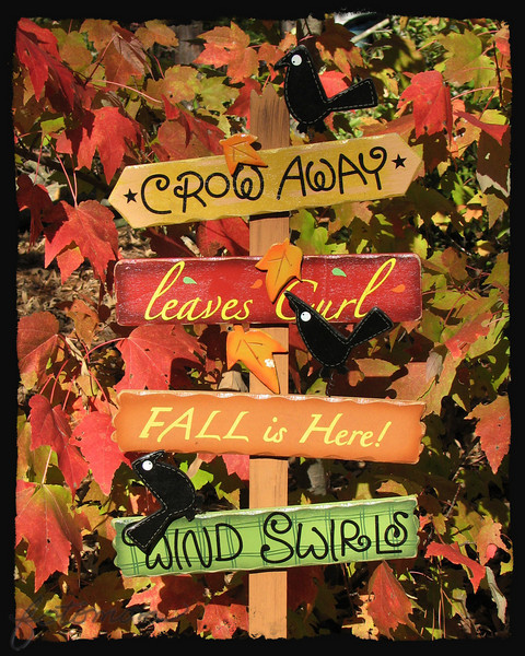 11/11/10 - Leaves Curl, Wind Swirls<br /> <br /> I bought this sign a few years ago at K-Mart, and it's been up in my yard every October/November since.  It usually sits in a pot of impatiens in a shady spot near my driveway with American Holly for a backdrop, and I've been thinking for some time about using it for a daily but with a different background.  We had a gorgeous day yesterday, and I walked over to Madi's house to chat with her mom early afternoon.  I just had to feel the warmth of the sun for a few minutes.  One of those days where it was warmer outside than in the house!  They had this gorgeous 'red' maple in their yard, and I thought it might be just the perfect backdrop and took a few pics.  <br /> <br /> There's actually a solid black layer over top of this shot at 10% opacity to give some depth to it.  It was just too bright.  I cropped to 8X10, straightened a tad, and added the frame with OnOne's PhotoFrame.<br /> <br /> Thanks for the comments on the camellia/bee shot from yesterday.  I do appreciate the time you spend when you stop by to view my daily photo and/or leave a comment.  <br /> <br /> Hope the weather is nice where you are too...<br /> HAGD,<br /> Maryann