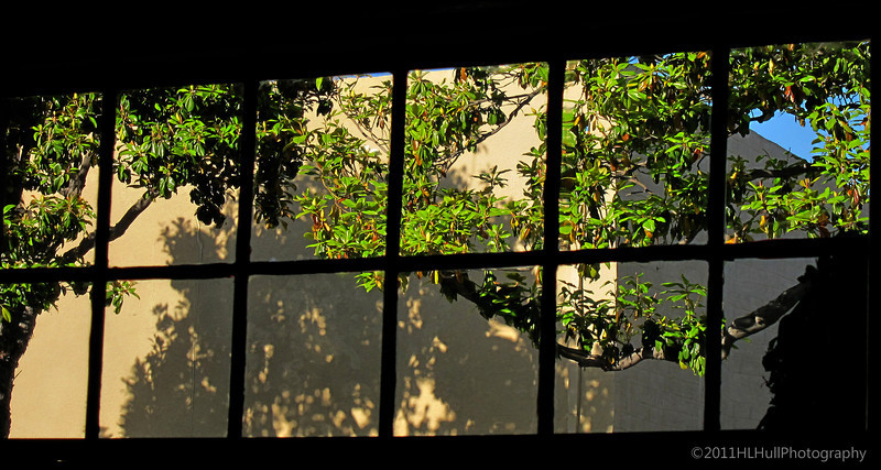 8.8.11<br /> <br /> window view...