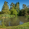 """One of several ponds at the Arboretum...<br /> <br /> Fullerton Arboretum<br /> Fullerton, CA <a href=""""http://fullertonarboretum.org/home.php"""">http://fullertonarboretum.org/home.php</a><br /> <br /> Thank you for your views and comments!<br /> <br /> Critiques welcome...<br /> <br /> 19 June 2014"""