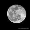 Moon Shot...