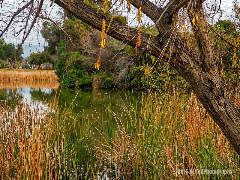 Legg Lake Park